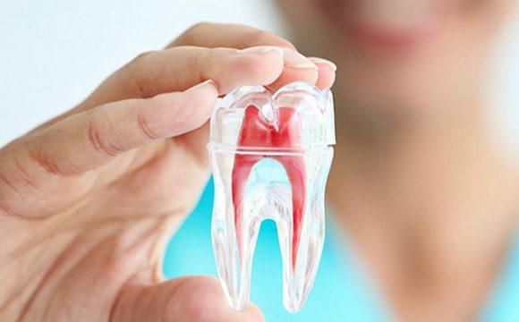 Algunos datos sobre la endodoncia